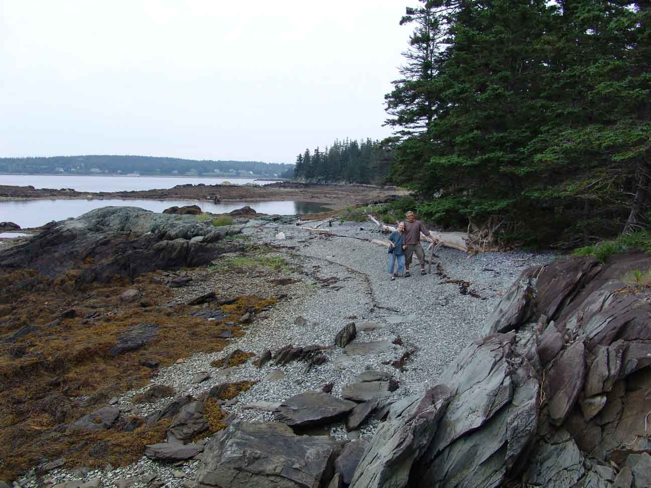 couple beach combing at holbrook island